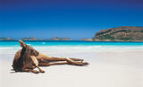 Kangaroo_Beach-2